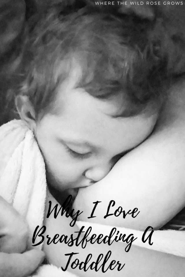 Why I Love Breastfeeding A Toddler (1)